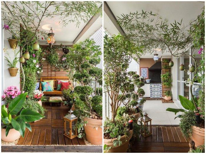 Fabrika de Case - Plante si arbusti decorativi