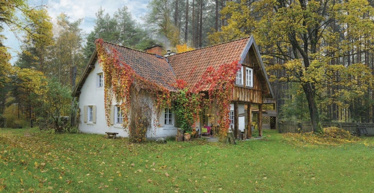 casă in padure